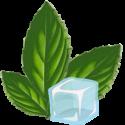 Arômes DIY BIO - Mentholés